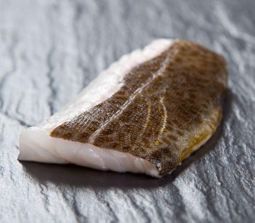Der Skrei hat noch  bis Ende März Saison. Frischfisch war noch nie so lecker!