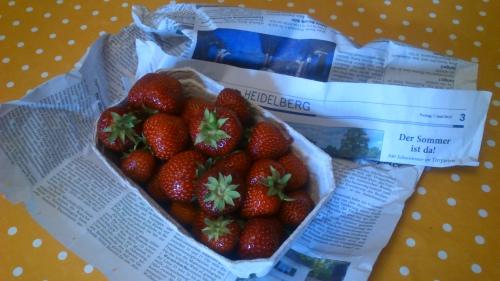Erdbeeren aus der Region